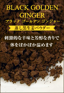 BLACK GOLDEN GINGER